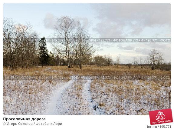 Проселочная дорога, фото № 195771, снято 3 февраля 2008 г. (c) Игорь Соколов / Фотобанк Лори