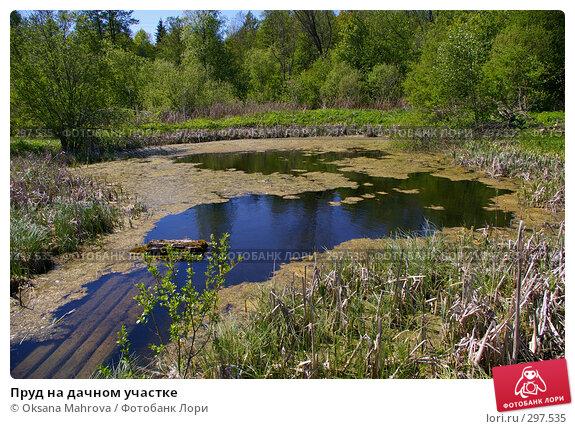Пруд на дачном участке, фото № 297535, снято 23 мая 2008 г. (c) Oksana Mahrova / Фотобанк Лори