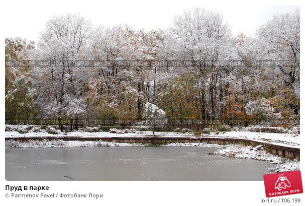 Купить «Пруд в парке», фото № 106199, снято 16 октября 2007 г. (c) Parmenov Pavel / Фотобанк Лори