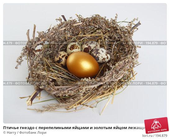 Птичье гнездо с перепелиными яйцами и золотым яйцом лежащими в нем, фото № 194879, снято 3 октября 2007 г. (c) Harry / Фотобанк Лори