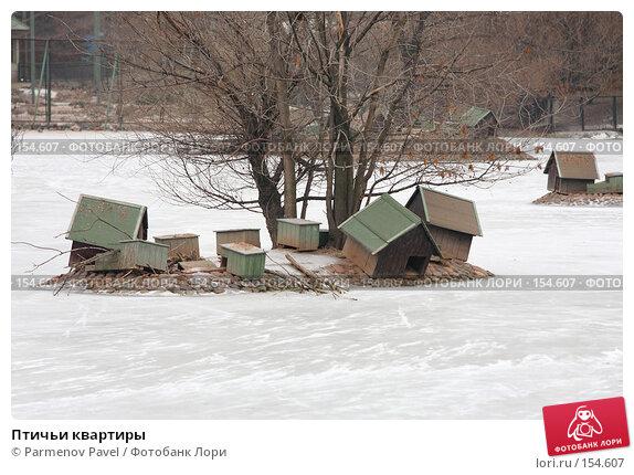 Птичьи квартиры, фото № 154607, снято 11 декабря 2007 г. (c) Parmenov Pavel / Фотобанк Лори