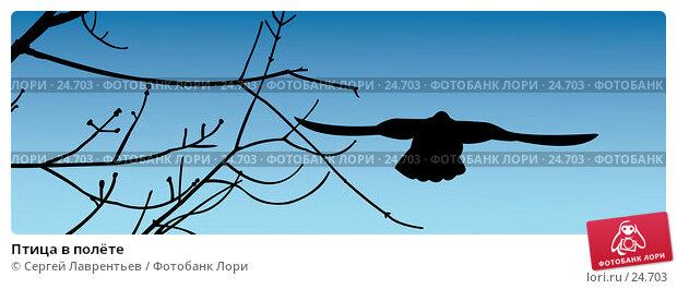 Птица в полёте, иллюстрация № 24703 (c) Сергей Лаврентьев / Фотобанк Лори