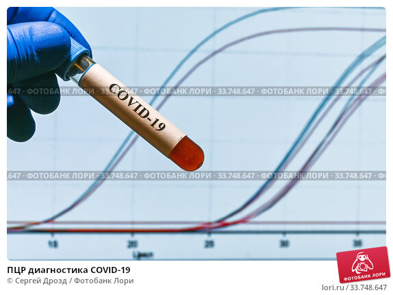 ПЦР диагностика COVID-19. Стоковое фото, фотограф Сергей Дрозд / Фотобанк Лори