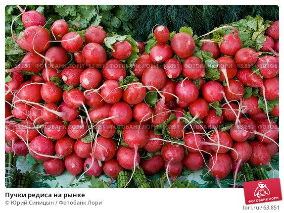 Пучки редиса на рынке, фото № 63851, снято 18 июля 2007 г. (c) Юрий Синицын / Фотобанк Лори