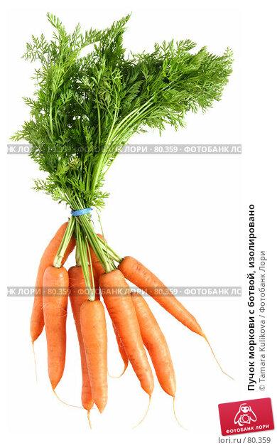 Пучок моркови с ботвой, изолировано, фото № 80359, снято 7 сентября 2007 г. (c) Tamara Kulikova / Фотобанк Лори