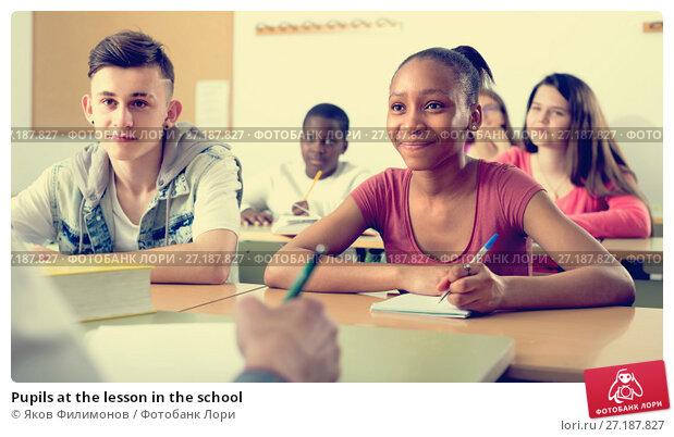 Купить «Pupils at the lesson in the school», фото № 27187827, снято 26 мая 2020 г. (c) Яков Филимонов / Фотобанк Лори