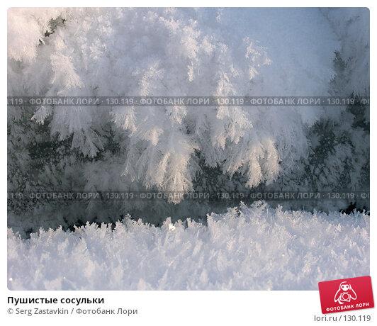 Пушистые сосульки, фото № 130119, снято 11 декабря 2005 г. (c) Serg Zastavkin / Фотобанк Лори