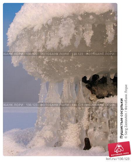 Пушистые сосульки, фото № 130123, снято 11 декабря 2005 г. (c) Serg Zastavkin / Фотобанк Лори