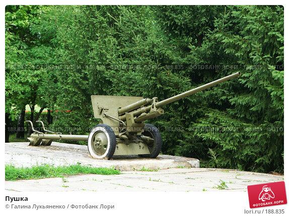 Пушка, эксклюзивное фото № 188835, снято 3 августа 2007 г. (c) Галина Лукьяненко / Фотобанк Лори
