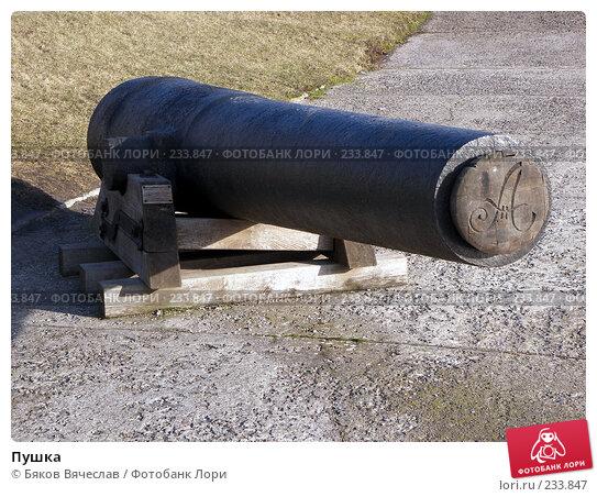 Пушка, фото № 233847, снято 26 февраля 2008 г. (c) Бяков Вячеслав / Фотобанк Лори