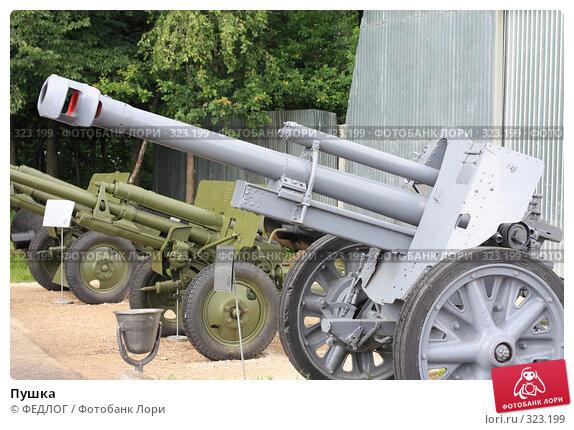 Купить «Пушка», фото № 323199, снято 15 июня 2008 г. (c) ФЕДЛОГ.РФ / Фотобанк Лори
