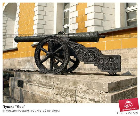 "Пушка ""Лев"", фото № 258539, снято 6 апреля 2008 г. (c) Михаил Феоктистов / Фотобанк Лори"