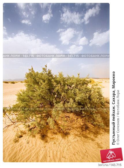 Пустынный пейзаж. Сахара, Марокко, фото № 143715, снято 18 августа 2007 г. (c) Олег Селезнев / Фотобанк Лори