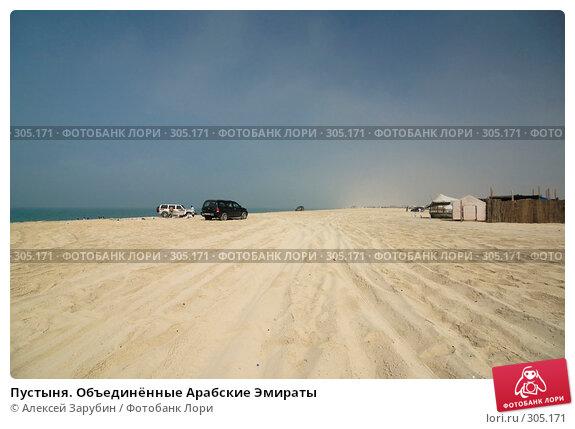 Пустыня. Объединённые Арабские Эмираты, фото № 305171, снято 17 ноября 2007 г. (c) Алексей Зарубин / Фотобанк Лори