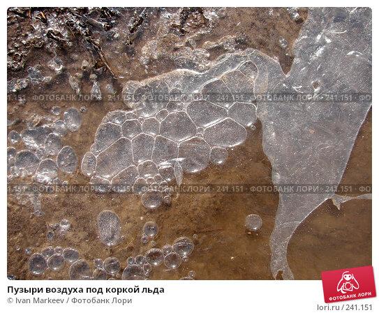 Пузыри воздуха под коркой льда, фото № 241151, снято 23 апреля 2017 г. (c) Василий Каргандюм / Фотобанк Лори