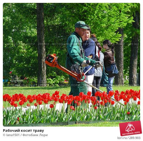 Рабочий косит траву, эксклюзивное фото № 289903, снято 8 мая 2008 г. (c) lana1501 / Фотобанк Лори