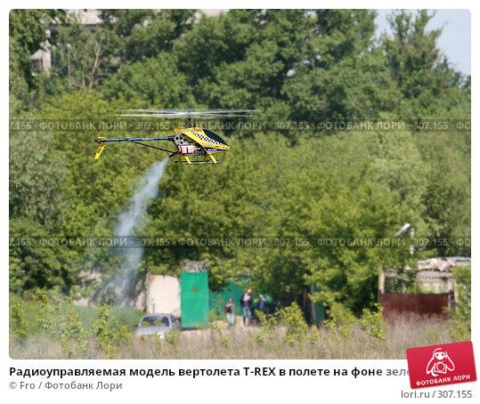 Радиоуправляемая модель вертолета T-REX в полете на фоне зелени и хозяйственных построек, фото № 307155, снято 31 мая 2008 г. (c) Fro / Фотобанк Лори