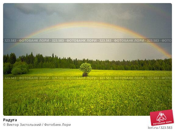 Радуга, фото № 323583, снято 12 июня 2008 г. (c) Виктор Застольский / Фотобанк Лори
