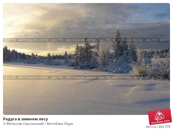 Радуга в зимнем лесу, фото № 263775, снято 10 ноября 2006 г. (c) Вячеслав Смоленский / Фотобанк Лори