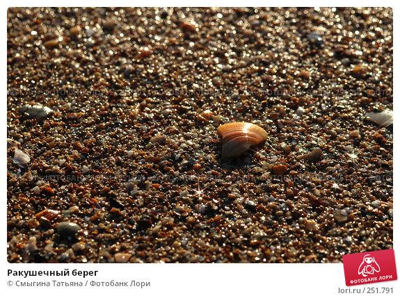 Ракушечный берег, фото № 251791, снято 28 марта 2006 г. (c) Смыгина Татьяна / Фотобанк Лори
