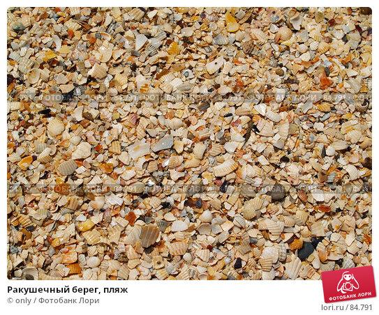 Ракушечный берег, пляж, фото № 84791, снято 6 августа 2007 г. (c) only / Фотобанк Лори