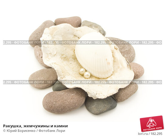 Ракушка, жемчужины и камни, фото № 182295, снято 20 января 2008 г. (c) Юрий Борисенко / Фотобанк Лори