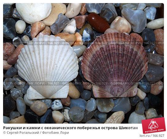 Ракушки и камни с океанического побережья острова Шикотан, фото № 166927, снято 26 мая 2017 г. (c) Сергей Рогальский / Фотобанк Лори