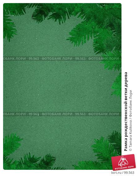Рамка рождественской ветки дерева, иллюстрация № 99563 (c) Tamara Kulikova / Фотобанк Лори