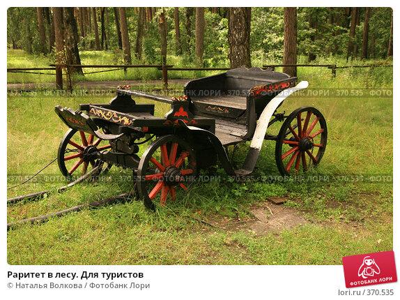 Купить «Раритет в лесу. Для туристов», фото № 370535, снято 12 июля 2008 г. (c) Наталья Волкова / Фотобанк Лори