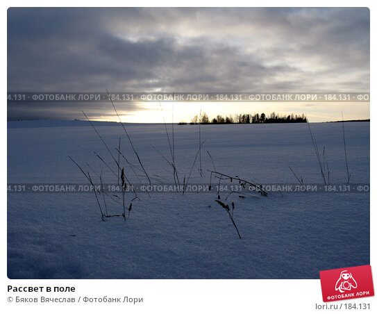 Рассвет в поле, фото № 184131, снято 3 января 2008 г. (c) Бяков Вячеслав / Фотобанк Лори