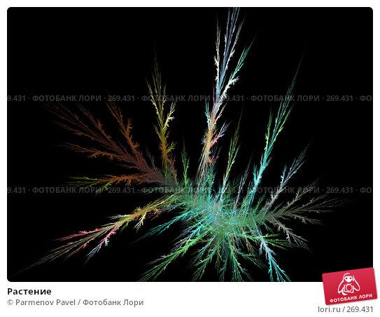 Растение, иллюстрация № 269431 (c) Parmenov Pavel / Фотобанк Лори