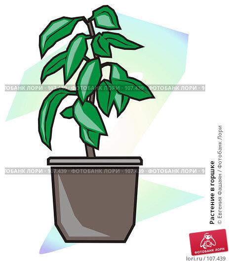 Растение в горшке, иллюстрация № 107439 (c) Евгения Фашаян / Фотобанк Лори
