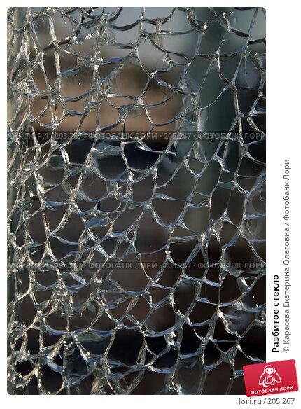 Купить «Разбитое стекло», фото № 205267, снято 18 января 2008 г. (c) Карасева Екатерина Олеговна / Фотобанк Лори