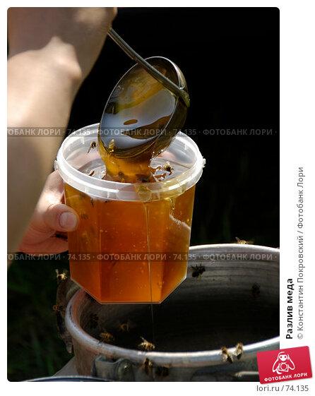Разлив меда, фото № 74135, снято 19 августа 2007 г. (c) Константин Покровский / Фотобанк Лори