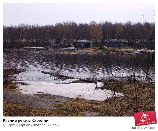 Купить «Разлив реки в Карелии», фото № 246883, снято 6 мая 2006 г. (c) Сергей Карцов / Фотобанк Лори