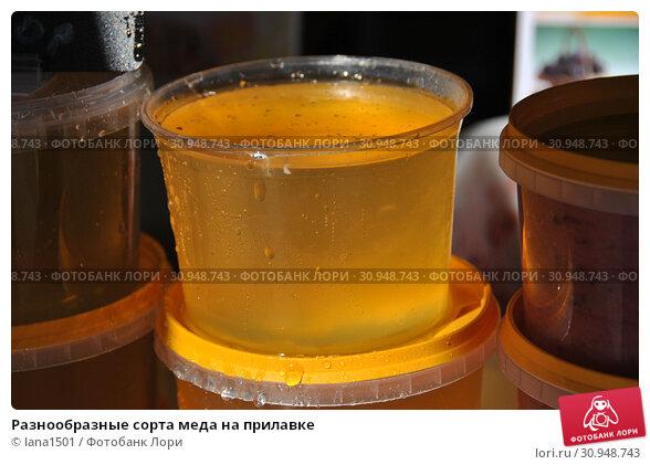 Купить «Разнообразные сорта меда на прилавке», эксклюзивное фото № 30948743, снято 7 сентября 2014 г. (c) lana1501 / Фотобанк Лори