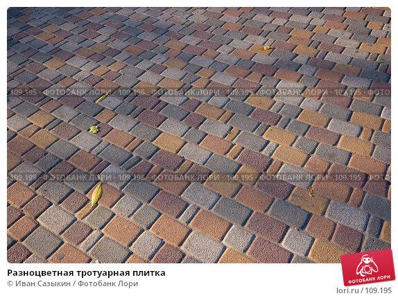 Разноцветная тротуарная плитка, фото № 109195, снято 23 октября 2007 г. (c) Иван Сазыкин / Фотобанк Лори