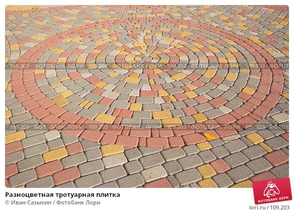 Разноцветная тротуарная плитка, фото № 109203, снято 23 октября 2007 г. (c) Иван Сазыкин / Фотобанк Лори