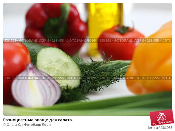 Разноцветные овощи для салата, фото № 238955, снято 31 марта 2008 г. (c) Ольга С. / Фотобанк Лори
