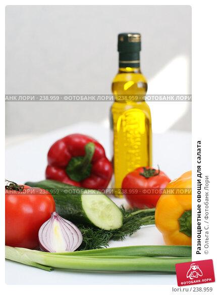 Разноцветные овощи для салата, фото № 238959, снято 31 марта 2008 г. (c) Ольга С. / Фотобанк Лори
