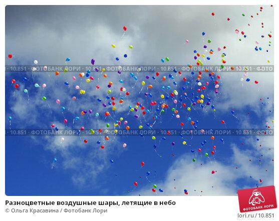 Разноцветные воздушные шары, летящие в небо, фото № 10851, снято 15 июля 2006 г. (c) Ольга Красавина / Фотобанк Лори