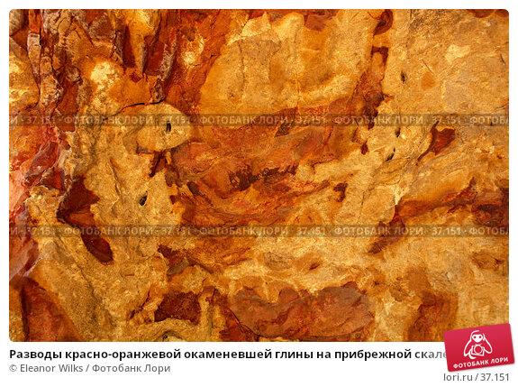 Разводы красно-оранжевой окаменевшей глины на прибрежной скале, фото № 37151, снято 24 мая 2007 г. (c) Eleanor Wilks / Фотобанк Лори