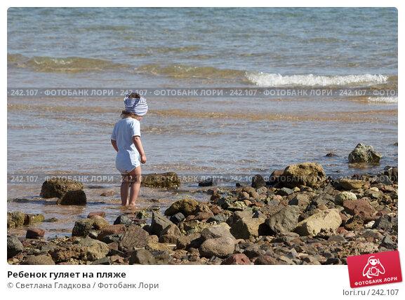 Ребенок гуляет на пляже, фото № 242107, снято 21 июля 2017 г. (c) Cветлана Гладкова / Фотобанк Лори