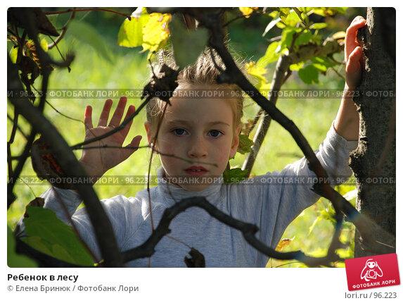 Ребенок в лесу, фото № 96223, снято 29 сентября 2007 г. (c) Елена Бринюк / Фотобанк Лори