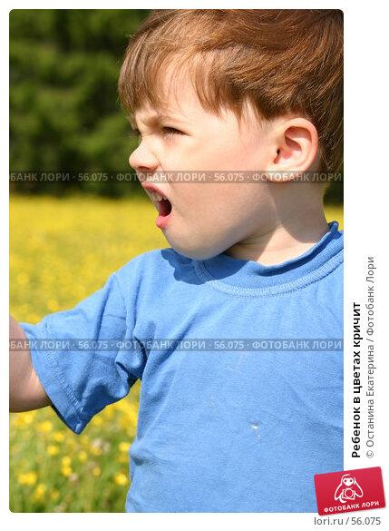 Ребенок в цветах кричит, фото № 56075, снято 10 июня 2006 г. (c) Останина Екатерина / Фотобанк Лори