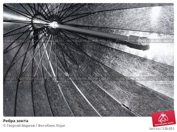 Купить «Ребра зонта», фото № 128051, снято 29 октября 2006 г. (c) Георгий Марков / Фотобанк Лори