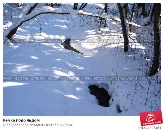 Речка подо льдом, фото № 107031, снято 11 марта 2006 г. (c) Кардаполова Наталья / Фотобанк Лори