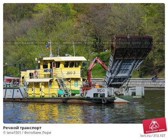 Купить «Речной транспорт», эксклюзивное фото № 313107, снято 27 апреля 2008 г. (c) lana1501 / Фотобанк Лори