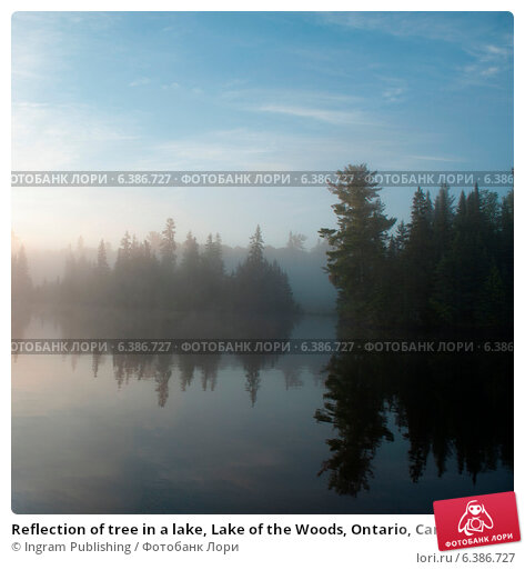 in the lake of the woods Lake of the woods, minnesota tourism offers weekly up to date fishing reports for lake of the woods, rainy river and nw angle.