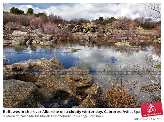Купить «Reflewes in the river Alberche on a cloudy winter day. Cabreros. Avila. Spain», фото № 28737775, снято 3 марта 2018 г. (c) age Fotostock / Фотобанк Лори